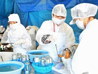 瓶に取れたてのウニを詰める久慈市漁協女性部のメンバー。朝市で販売し、魅力を発信する