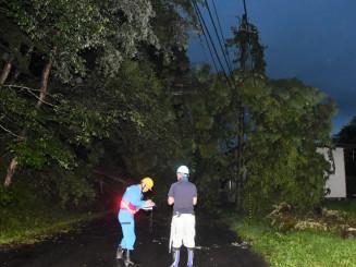 土砂崩れによる倒木で通行止めとなった市道=27日午後6時58分、奥州市江刺米里