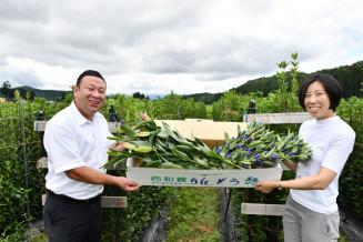 西和賀産のリンドウとユリを詰めた「高原の花ギフト」をPRする関係者