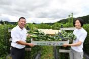 「高原の花」で帰省気分を 西和賀産業公社、全国に発送