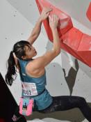伊藤 JC3連勝なるか スポーツクライミングあす盛岡で開幕