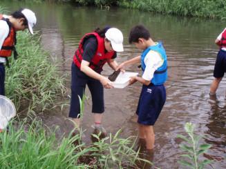 昨年の中津川での水質調査の様子。環境へ理解を深める活動の継続が評価された(下橋中提供)