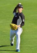 朗希、見違える体格 仙台でキャッチボール