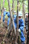 海育む森の大切さ学ぶ 大船渡・末崎中が林業体験