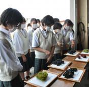 小規模高校 授業に特色 地域が題材、県教委事業化