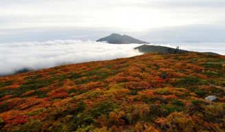 朝日に輝く紅葉。雲海の向こうに岩手山(正面奥)を望む=30日午前6時16分、三ツ石山山頂(八幡平市側から報道部・菊池健生撮影)