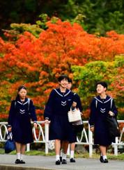 モミジが色づく中、冬服に衣替えして登校する盛岡白百合学園中・高の生徒=1日、盛岡市山岸