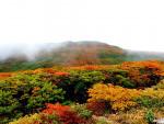焼石岳(奥州市)=9月30日、10月1日
