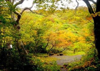 焼石岳(奥州市)=10月8日