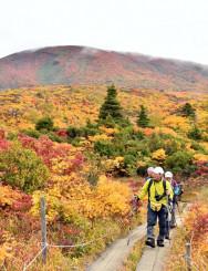 見頃を迎えた名残ケ原の紅葉を楽しむ登山者=9日、一関市