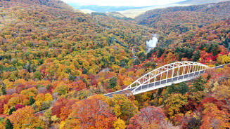赤や黄色に染まる松川大橋周辺。紅葉が最盛期を迎えた=15日、八幡平市松尾寄木(本社小型無人機から撮影)