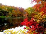 焼石岳(奥州市)=10月17日