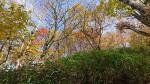 六角牛山(遠野市)=10月18日午後0時15分
