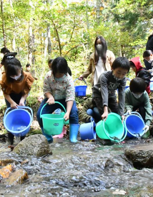 ヤマメやイワナの稚魚を山口川に放流する児童ら