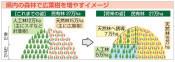 クマの餌実る森を拡大 福井県が「針広混交林」倍増計画