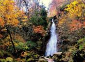 岩手山麓七滝&松川渓谷(八幡平市)=10月27日9時~