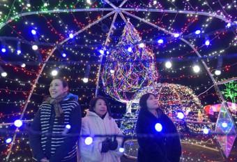 鮮やかな光が冬の夜を彩るイルミネーション=2019年11月、雫石町・小岩井農場
