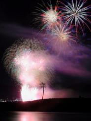 陸前高田市で打ち上げられた花火。中央下は「奇跡の一本松」=31日夜