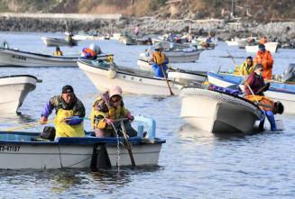 先端にかぎのついたさおで手際良くアワビを採る漁業者=1日午前7時5分、大船渡市三陸町吉浜