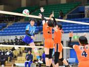 高田7大会ぶりV 春高バレー県予選、男子は不来方連覇