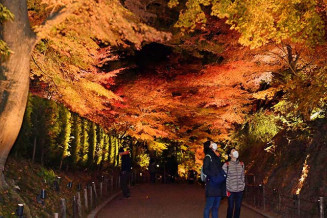 暗闇に紅葉の赤や黄色が映える参道=5日、平泉町平泉・中尊寺