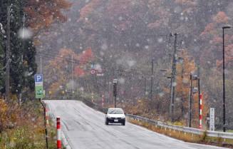 冷え込む中、大粒の雪が宙を舞う=9日、雫石町橋場