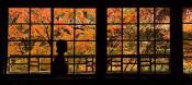 窓枠に秋色の輝き 金ケ崎・大松沢家で紅葉見頃