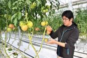 地域を創る新しい力⑦ 岩手・農産物の生育環境制御