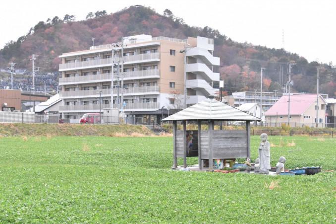 緑地と駐車場が整備された旧役場庁舎跡地。伝承活動への活用策を探る=20日、大槌町新町