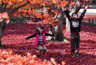 一面に広がった赤色の落ち葉を舞い上げて遊ぶ子どもたち=21日、盛岡市愛宕町・市中央公民館