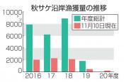 県内秋サケ 不漁深刻 前年同期比56%減、単価は高騰