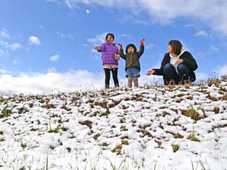 草むらに積もった雪を集め、元気に遊ぶ子どもたち=28日、盛岡市本宮