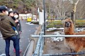 長期の休園前に感謝祭イベント 盛岡市動物公園