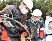 閉校前、最後の産卵調査 宮古・亀岳小、全校でチョウ保護活動