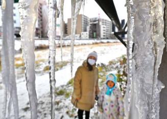 厳しい冷え込みで橋の下に太く育ったつらら=15日、盛岡市・中の橋