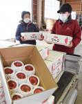 新成人にリンゴでエール 滝沢市が発送、生産者支援