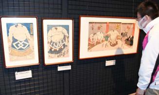 土俵入りなどを描いた秀ノ山の錦絵3点。いずれも実物