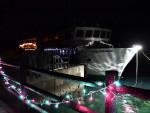 遊覧船、思い出 光に包まれ 宮古でライトアップ、27日まで