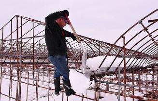ハウスの間にたまった雪をかき出すブドウ生産者。さらなる被害が生じないよう祈りながらの作業を続ける=29日午後4時4分、奥州市江刺愛宕