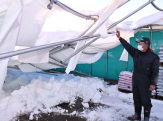 湿った重い雪により壊れたハウス施設。農家は今後の降雪にも懸念を強める=6日、奥州市胆沢小山