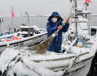 大船渡漁港に係留中の船に積もった雪を払う漁業者=12日午前10時28分、大船渡市大船渡町