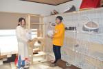 幸せな〝ニャン生〟を 盛岡の「もりねこ」ケアホーム開設