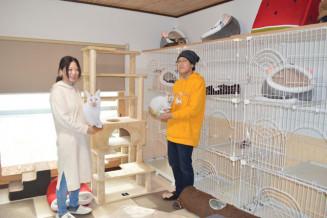 保護猫の特別ケアホーム兼老猫ホーム「しっぽのおうち」で猫を見守る千葉俊喜館長(右)と工藤幸枝理事長