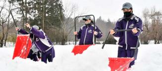 金ケ崎町の高齢者宅周辺で、雪かきに励む花巻東高女子硬式野球部の生徒たち