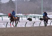 黒字1.2億円 融資返済へ 岩手競馬、21年度は「日月火」開催