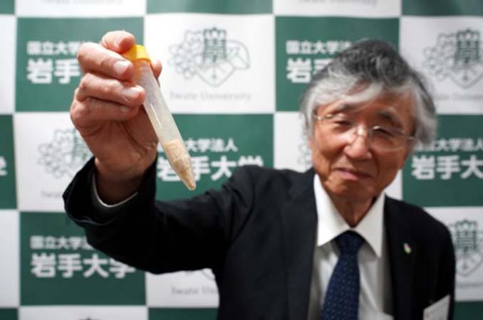 発見した新物質「ナトリード」を手にする鈴木幸一岩手大名誉教授
