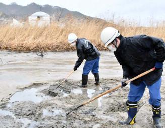 泥をかき分けて行方不明者の手掛かりを探す釜石海保の職員
