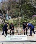 奇跡の一本松、後継樹が名古屋に 陸前高田から寄贈