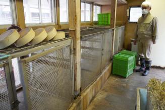 カイウサギがいなくなり、閑散としたケージ=30日、盛岡市新庄・市動物公園