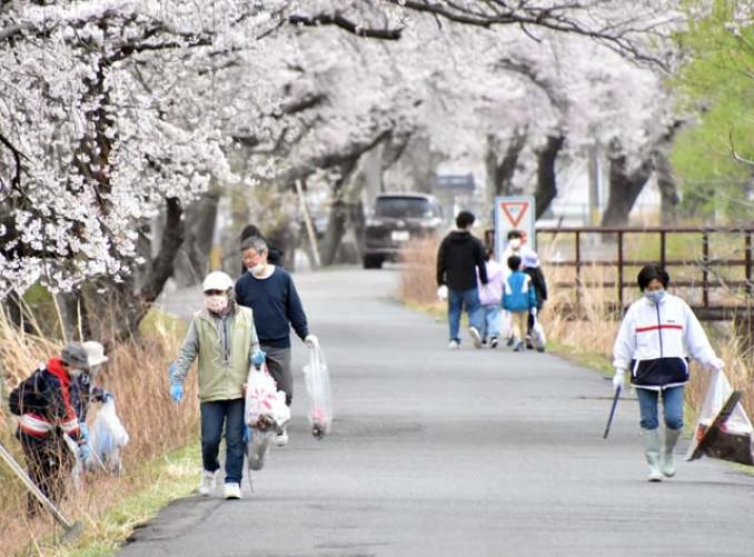 甲子川沿いの道路やのり面で清掃作業に励む住民